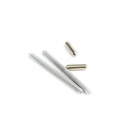 Takedown/Pivot Pin Detents & Springs - 100 Sets